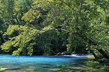 Althea Spring - Feeds the North Fork River
